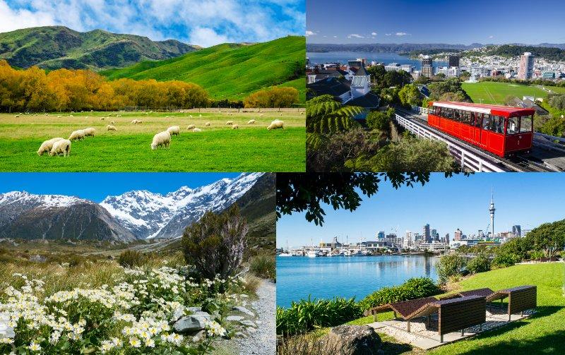 自然に囲まれゆったりとした環境で学べる国「ニュージーランド」